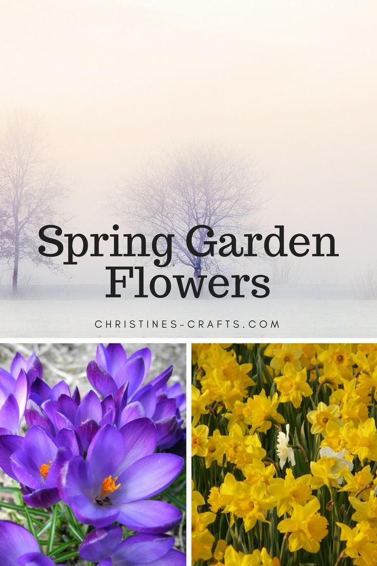 41+ Christines flowers info