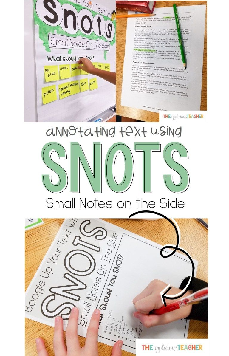 Annotating Text Using SNOTS Annotating text, 6th grade