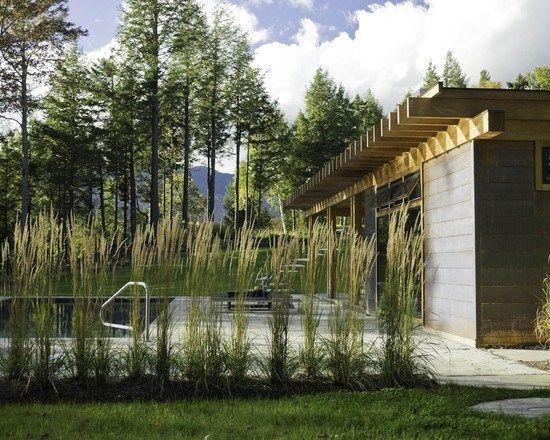 Schilf Im Garten Haus Im Gebirge Pool Sichtschutz Hohe Ziergräser