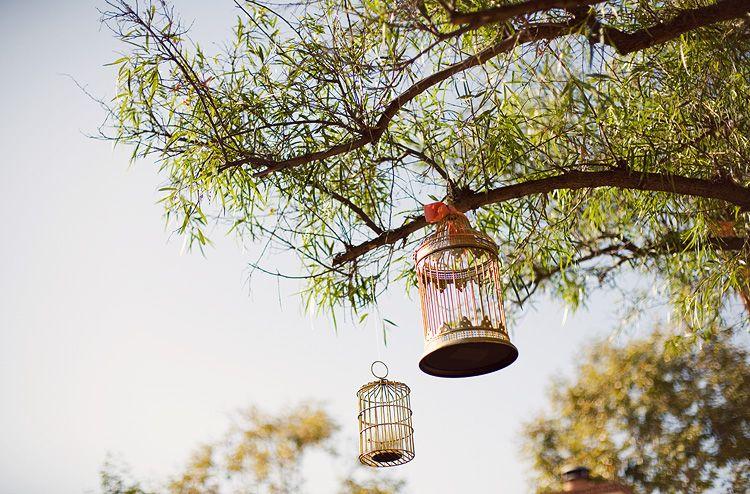 Unique Wedding Reception Ideas | Cheap Wedding Reception Ideas | Cheap Unique Wedding
