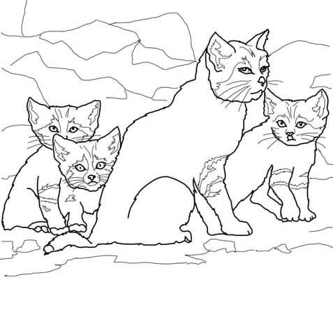 Ausmalbild Sandkatzenjunge Mit Ihrer Mutter Ausmalbilder Kostenlos Zum Ausdrucken Ausmalbilder Ausmalbilder Zum Ausdrucken Ausmalen