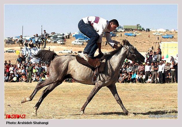 Qashqai man during an equestrian exhibition. میلیون هوادار تورک قشقایی تراختور