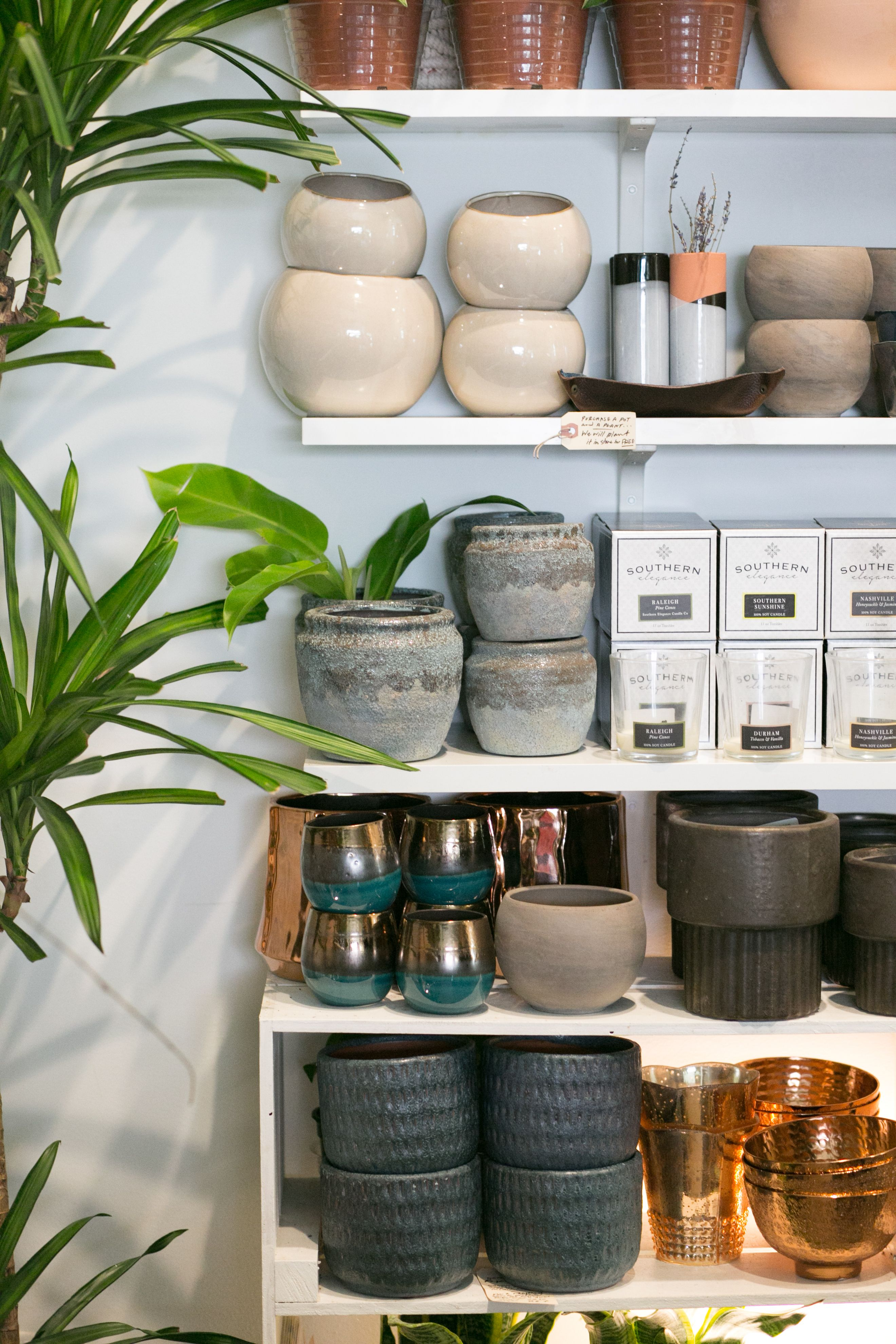 The Zen Succulent Ceramic Planters Modern Terrarium Plant Crafts Terrarium Plants