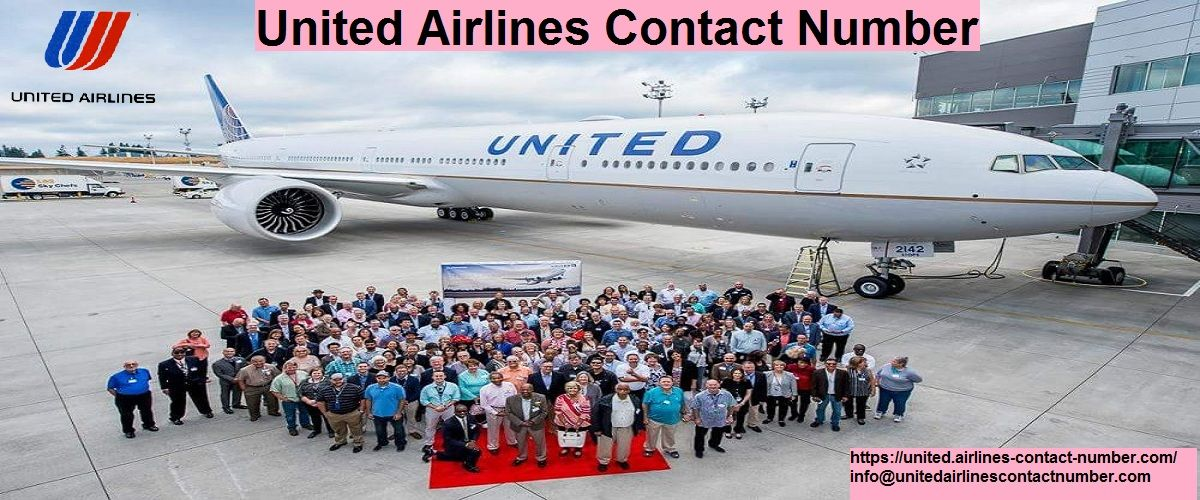 Book Tickets From United Airlines Contact Number United Airlines Flight Reservation The Unit