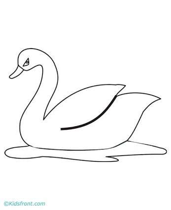 Swan coloring pages ile ilgili görsel sonucu