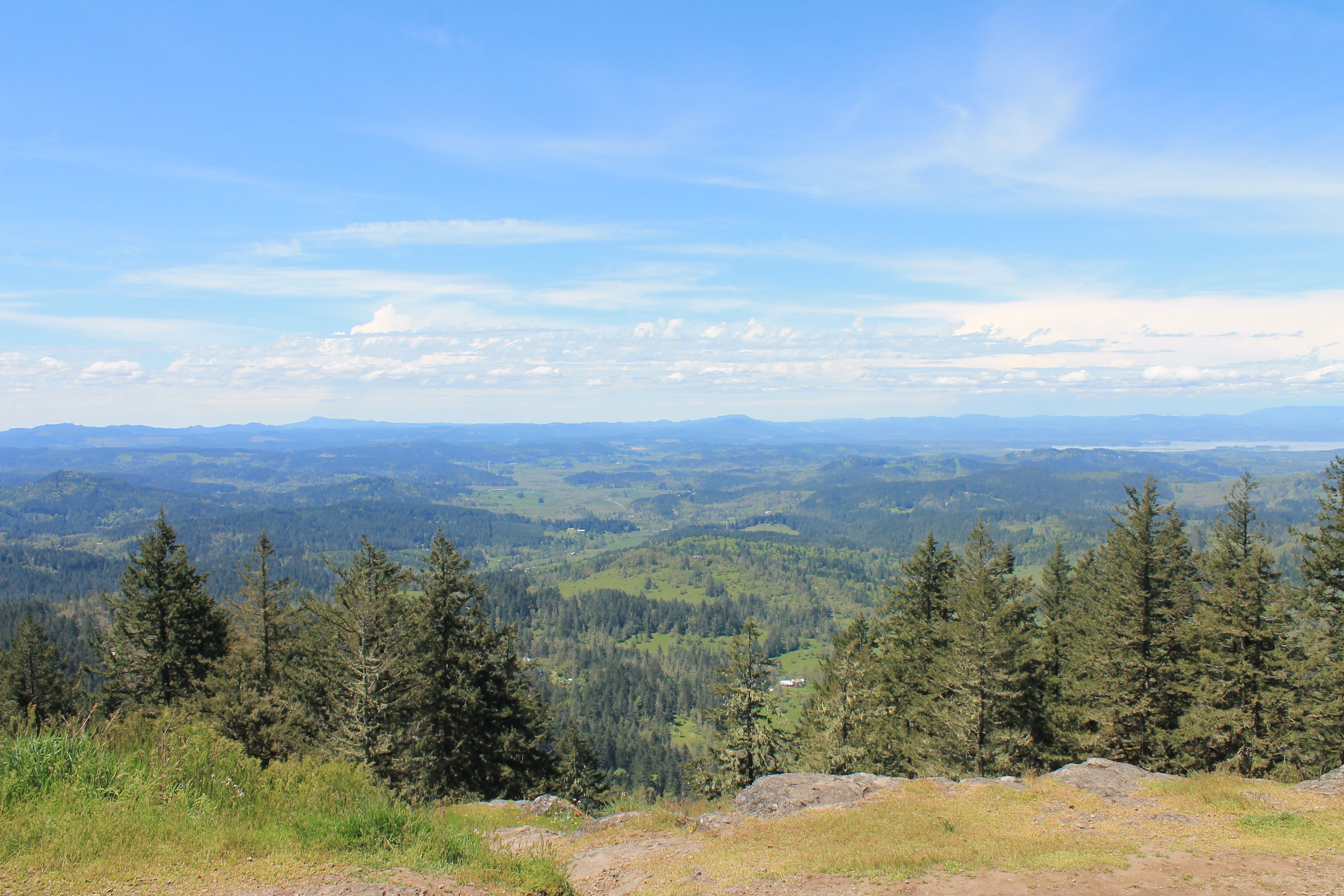 Spencer Butte Trail. Eugene. Hiking in Oregon. 2.2 mile hike.