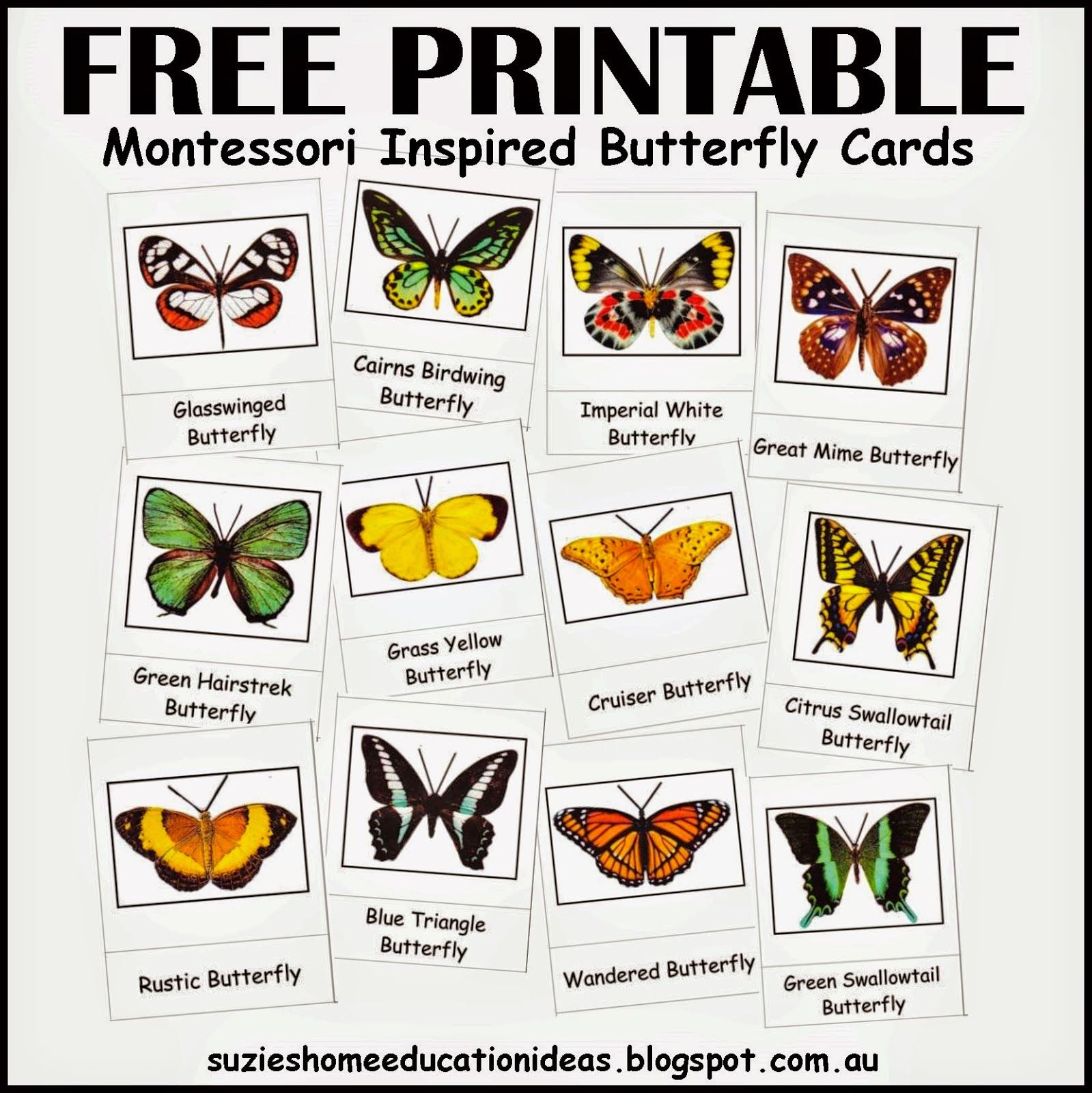 Free Spring Printables Resources For The Montessori Classroom