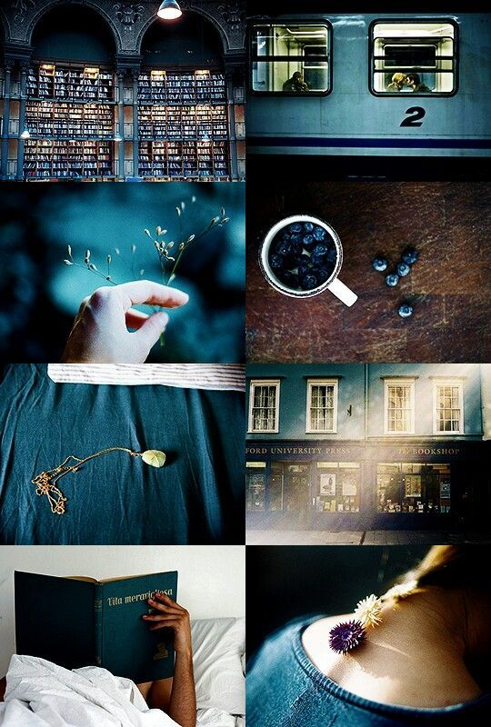 HP house aesthetic  ravenclaw
