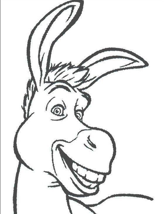 Smiling Donkeys Width