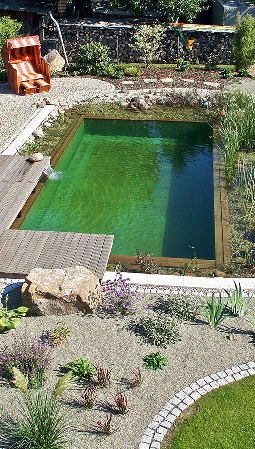 Naturpool wohlf hloase mit farbakzenten naturpool pool - Tauchbecken im garten ...