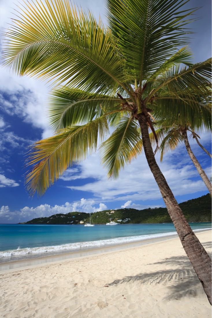 Magens Bay Beach in St. Thomas, US Virgin Islands is a picture-perfect mile of fine white sand lined with palm trees. #Travel #Caribbean #LikeaLocal