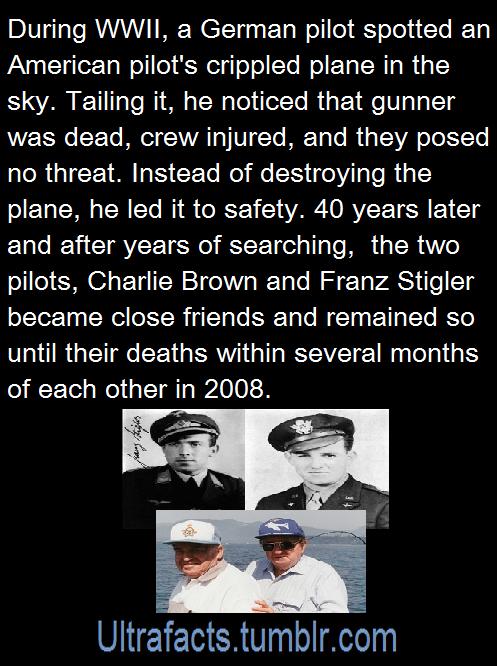 Ultrafacts Tumblr Com P O  C B Ww Factsfunny