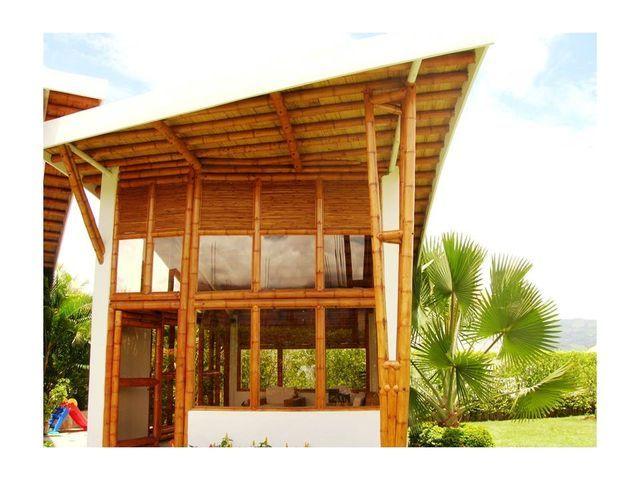 La guadua m ltiples posibilidades formales bambu for Diseno y construccion de piscinas en colombia
