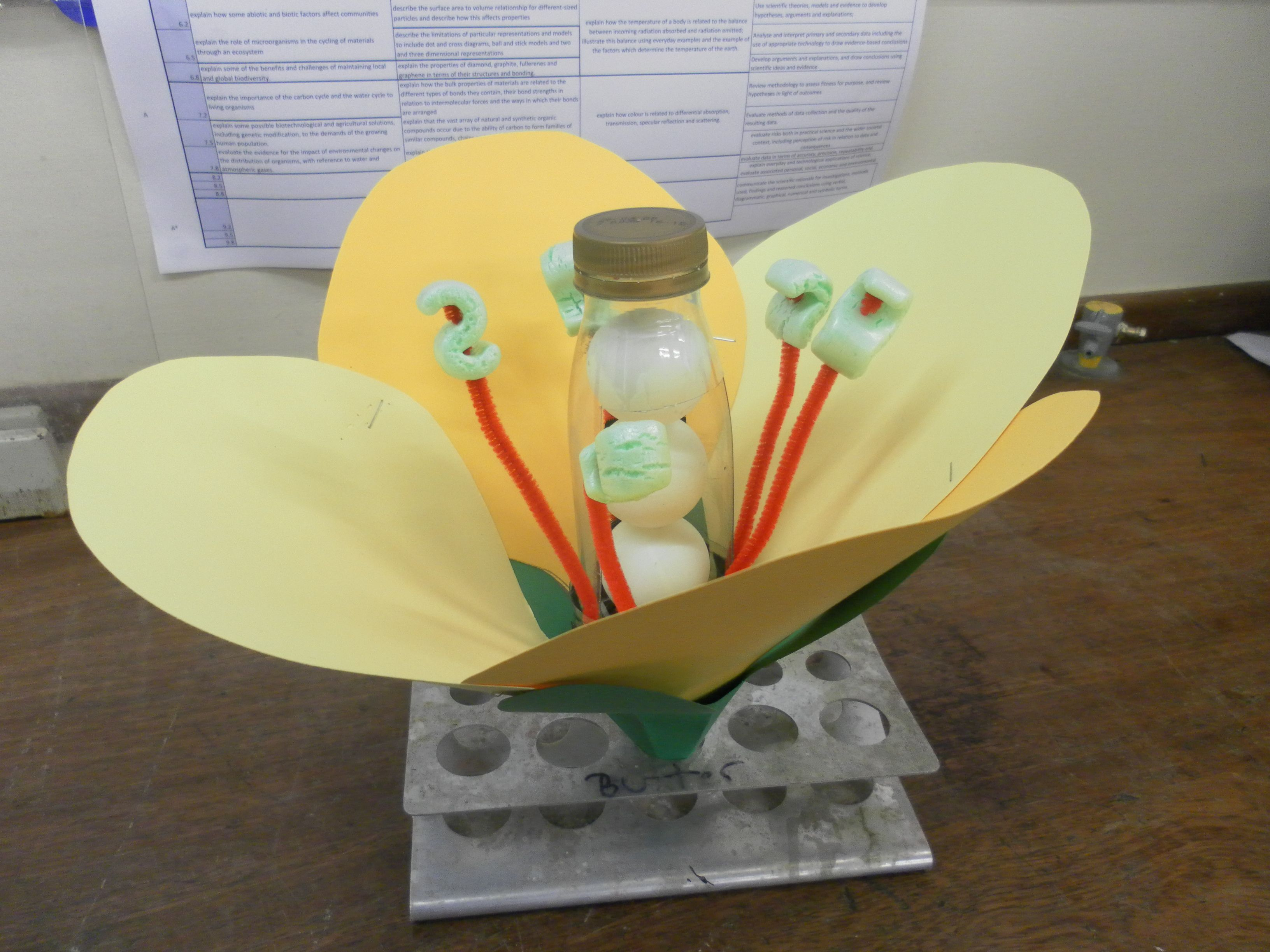 3d Flower Model Project Ideas - Year of Clean Water