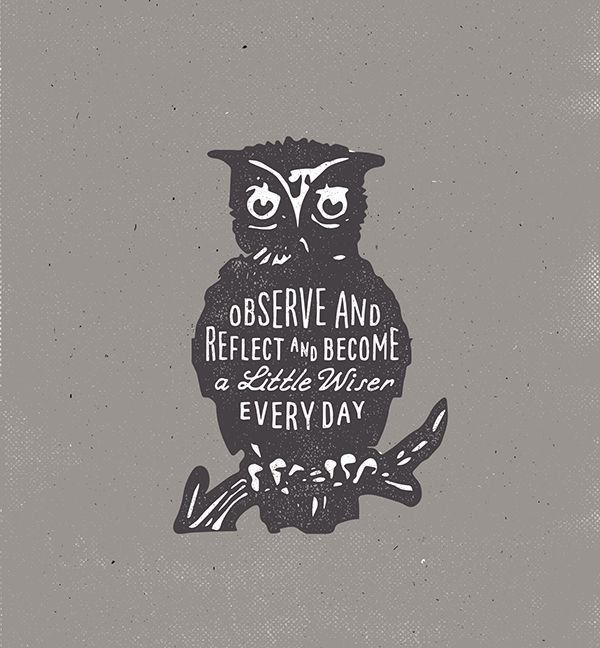 Observe and reflect and become a little wise every day ...