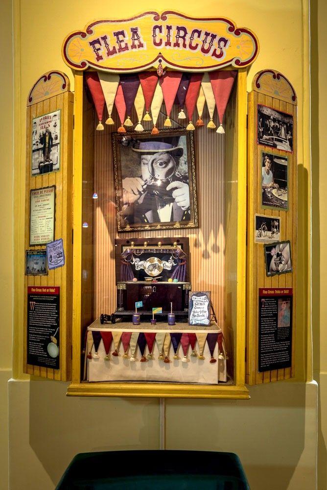 Flea Circus Display | Decor, Home decor, Liquor cabinet