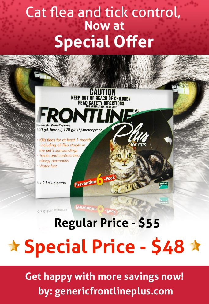 Cat flea control at special price, click to get offer http://www.genericfrontlineplus.com/?utm_source=pinterest&utm_medium=product-offer-image&utm_term=frontline-plus-for-cats-and-kittens-8-weeks-older&utm_campaign=november-smo