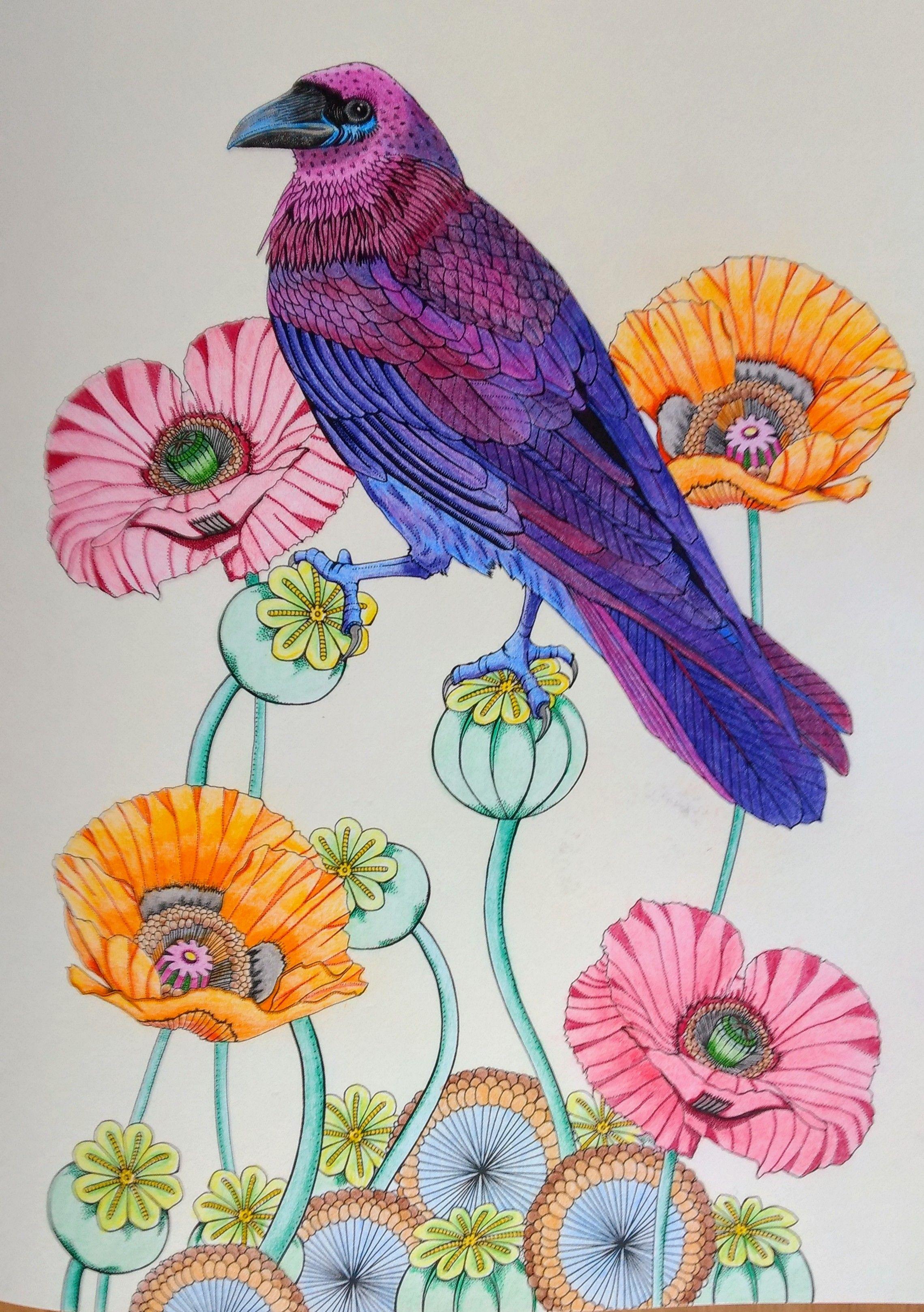 Uit Het Boek Vogel Paradijs Van Daisy Fletcher From The Book Birdtopia From Daisy Fletcher Gekleurd Door Adri Colored Coloring Books Coloring Pages Art