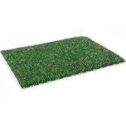 Outdoorteppich Green Primaflor-Ideen in Textil rechteckig Höhe 75 mm Primaflor