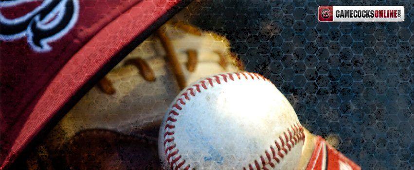 South Carolina Baseball Facebook Cover Photo With Images Twins Baseball