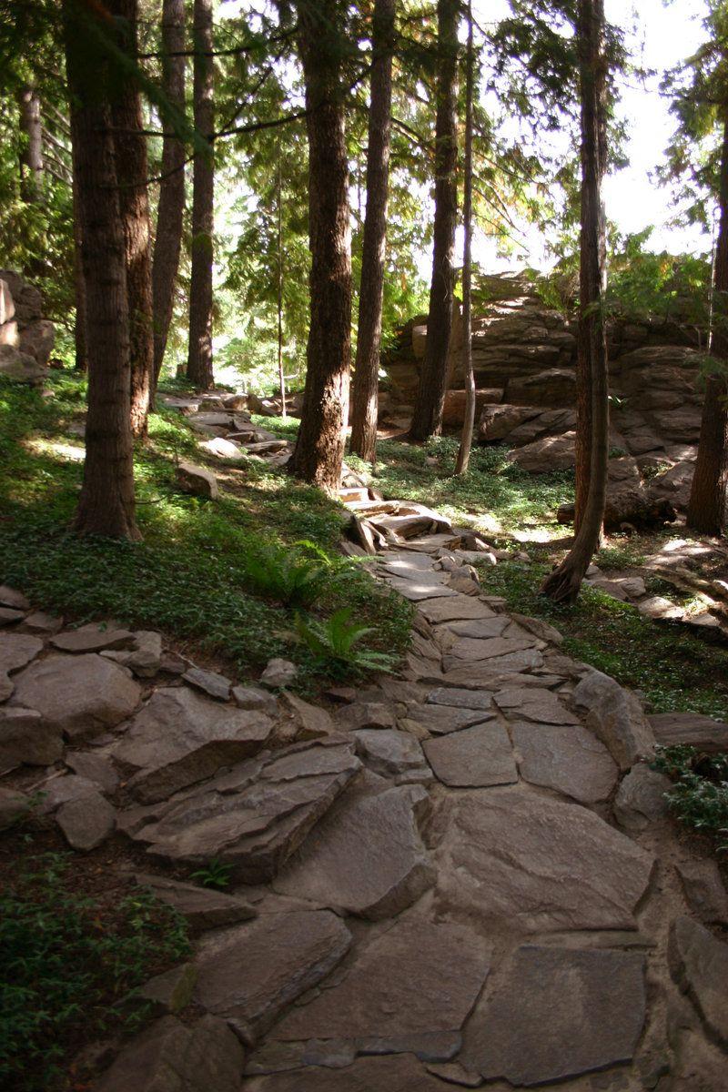 Forest Path 2 by FoxStox.deviantart.com on @deviantART