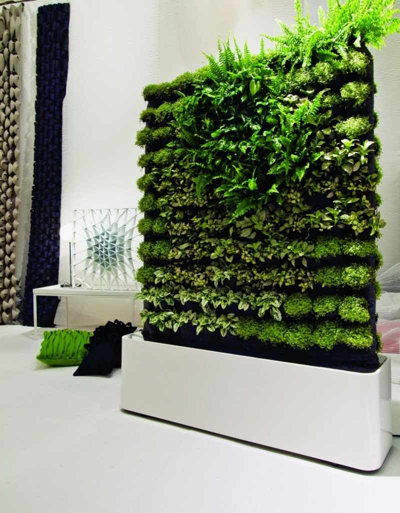green room divider, good for a kitchen having fresh herbs when