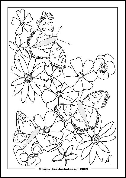 butterfly with flowers coloring pages butterfly with flowers coloring pages - Blank Coloring Pages Children
