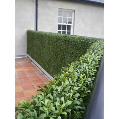 E Joy 2 Ft H X 2 Ft W Artificial Topiary Milan Hedge Plant Fence Panel Wayfair Garden Fence Panels Artificial Hedges Artificial Boxwood