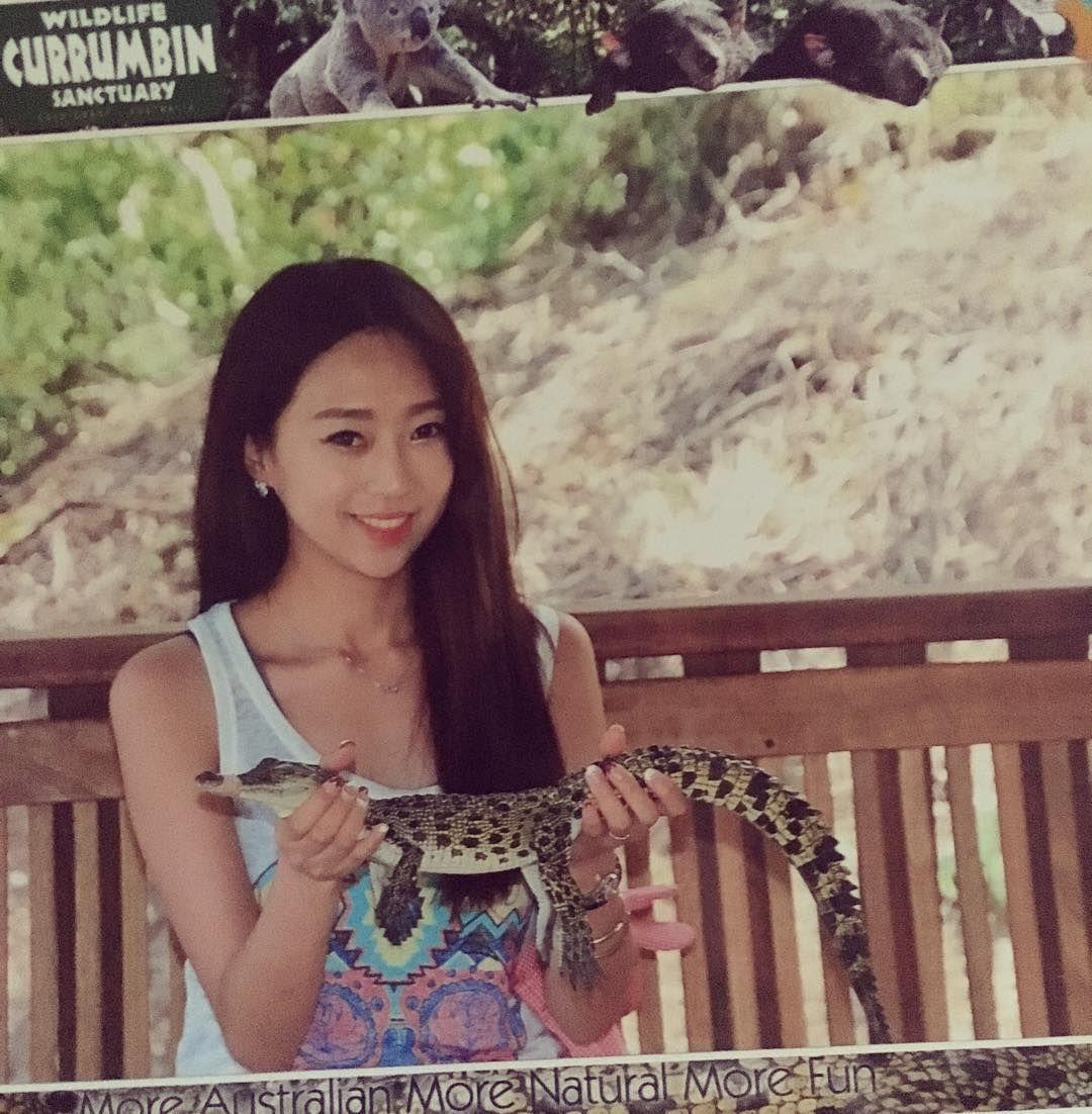 #crocodile #currumbinwildlifesanctuary #Australia #Goldcoast  자연스럽게 웃고잇지만  내가 웃는게 웃는게 아니야 그래도 애기악어는 귀여웠다냥  by ljsstory http://ift.tt/1X9mXhV