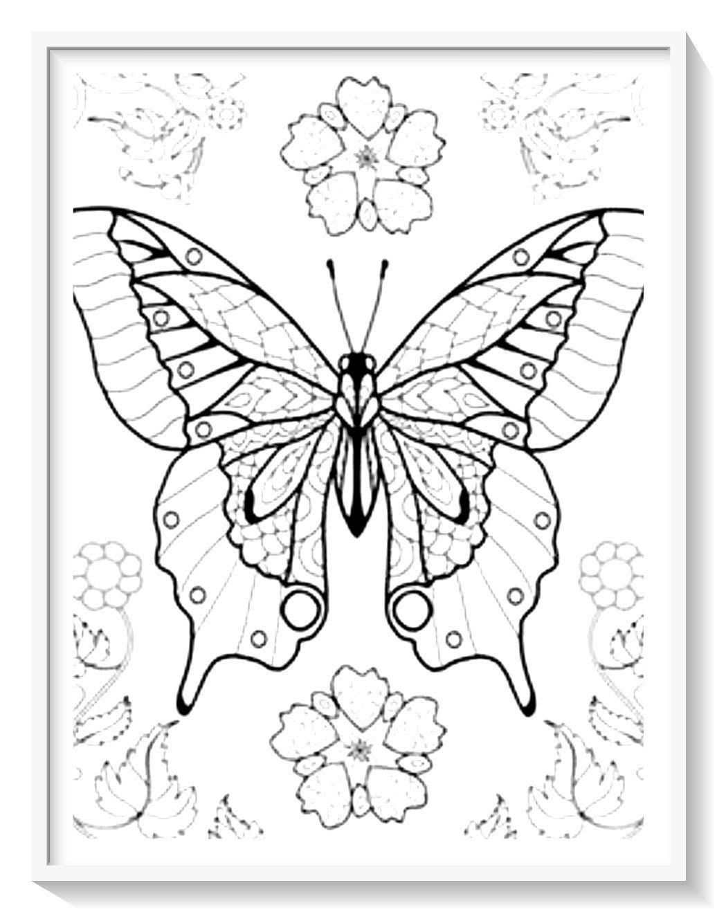 Los Más Lindos Dibujos De Mariposas Para Colorear Y Pintar A Todo