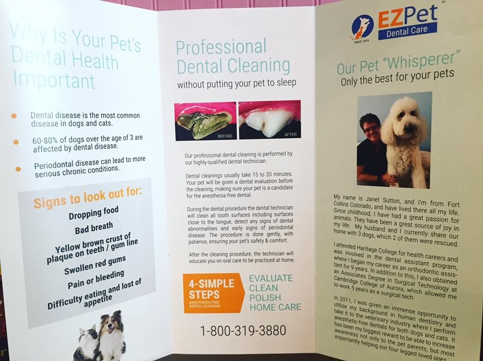 Pin By Woof Gang Bakery Thornton Park On Wet Dog Food With Images Wet Dog Food Dental Cleaning Dental Care