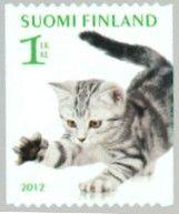 Finnish Silver Tabby British Shorthair Cat British Shorthair Kittens Cat Care Pets Cats
