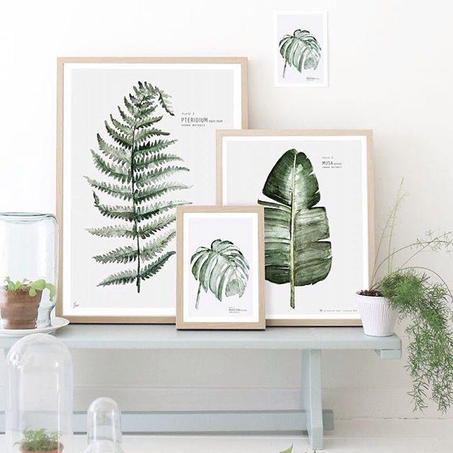 #love #botanic #frames #ludorn #prints #posters