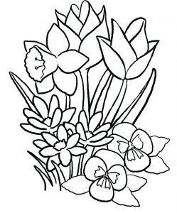blumen malvorlagen für erwachsene - zeichnen und malen