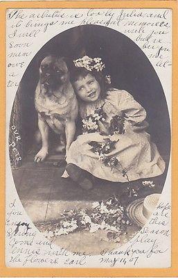 Pugorilla Puppies And Kitties Cute Dogs Pugs
