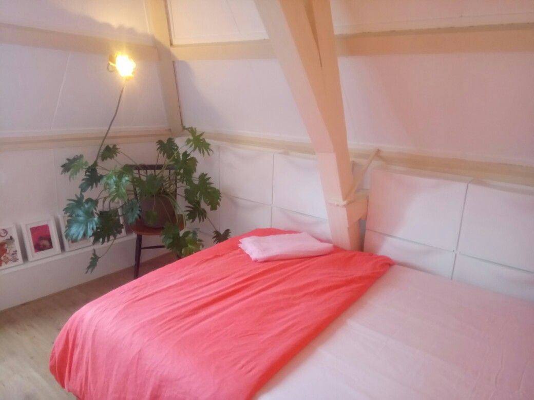 Diy Slaapkamer Girlscene Kamer Pimpen