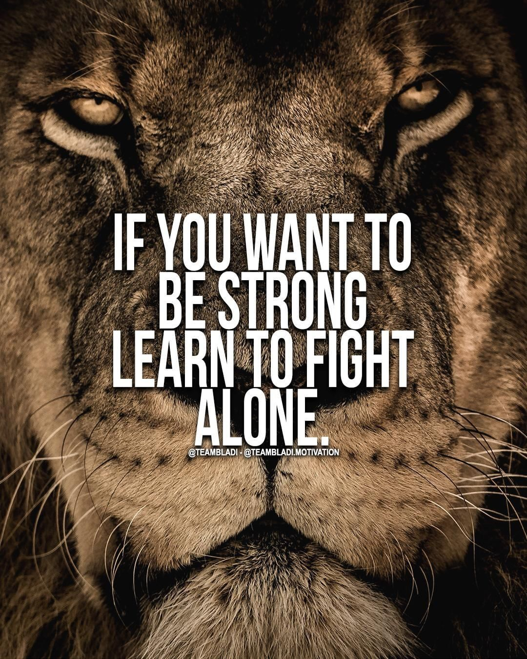 If You Want To Be Strong Learn To Fight Alone Motivation Quotes