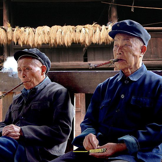 PIPES - ZHAOXING