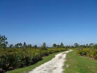 0.31 Acre Central Florida Land Lot Nr Lake Wales FL Bidding on Full Price! NR https://t.co/ZdBIasVQIa https://t.co/2edGupf5Es