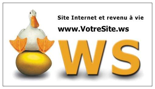 Site Internet et revenu à vie
