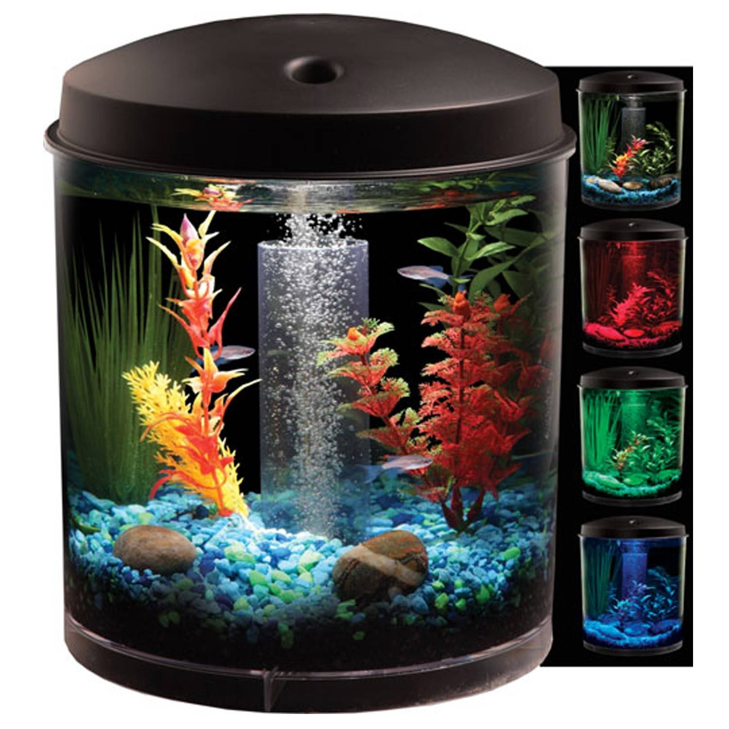 Petco 360 View Aquarium Kit 30 00 2 Gallon Aquarium Kit Small Fish Tanks Betta Fish Tank