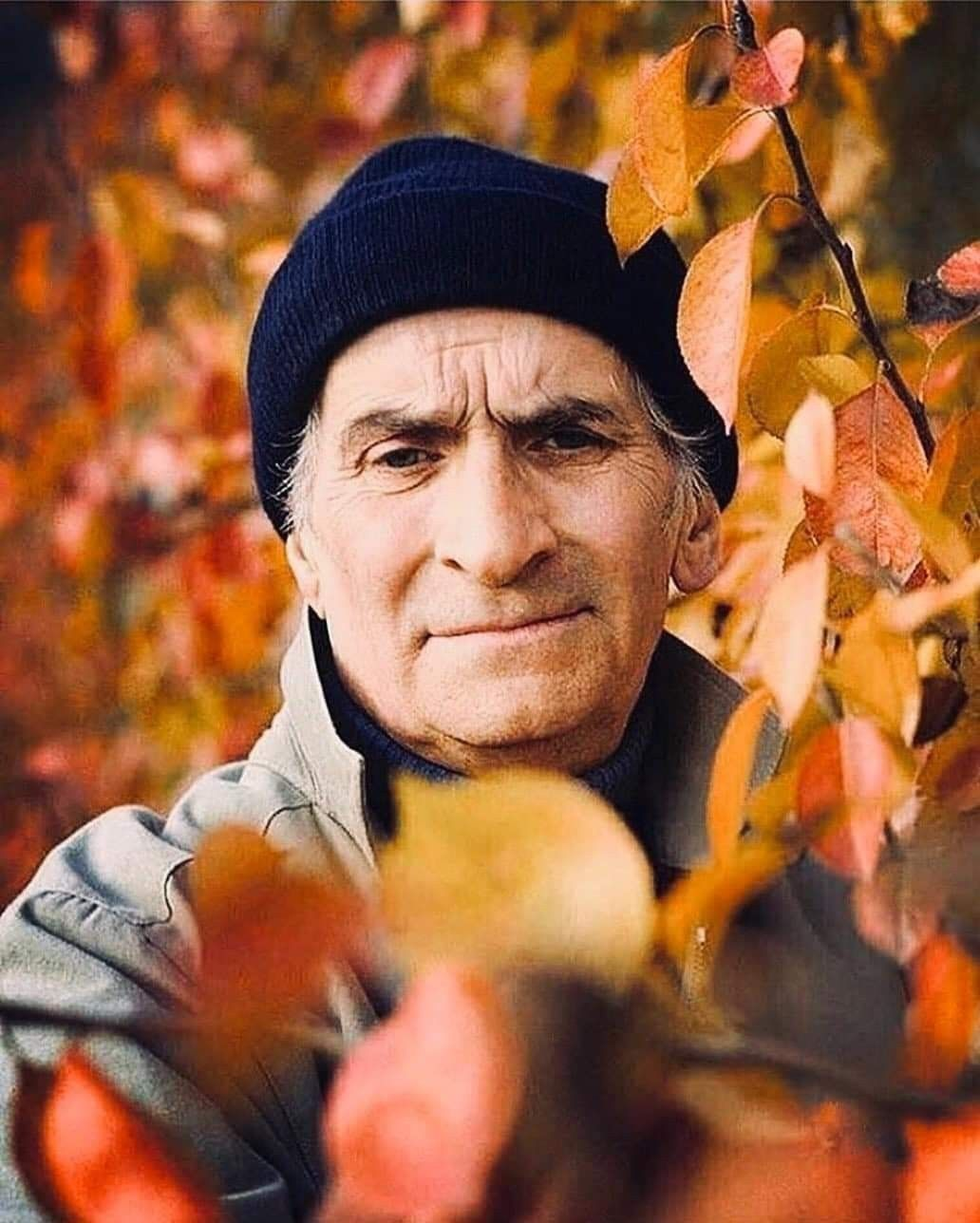Poslednyaya Osen Francuzskogo Aktyora Lui De Fyunesa Nant Noyabr 1982 Goda Snimok Ochen Krasivyj Trogatelnyj Aktyor S Uvyada Photo Couple Photos Photo Wall