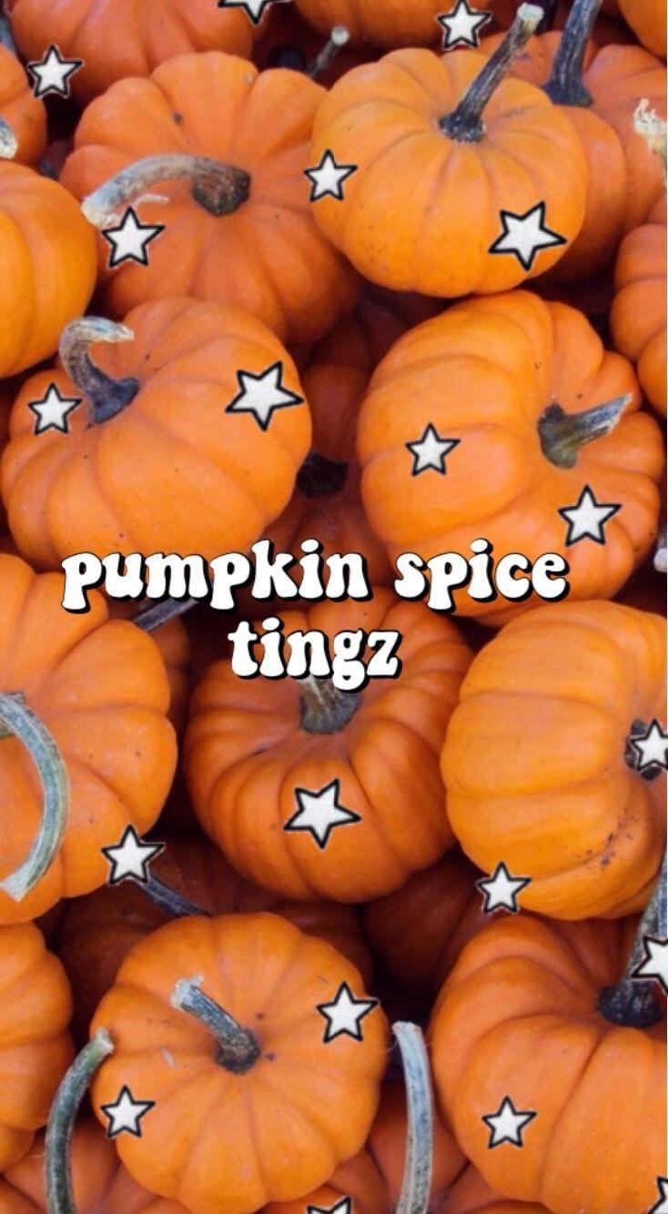 aesthetic vsco pumpkin fall iphone wallpaper