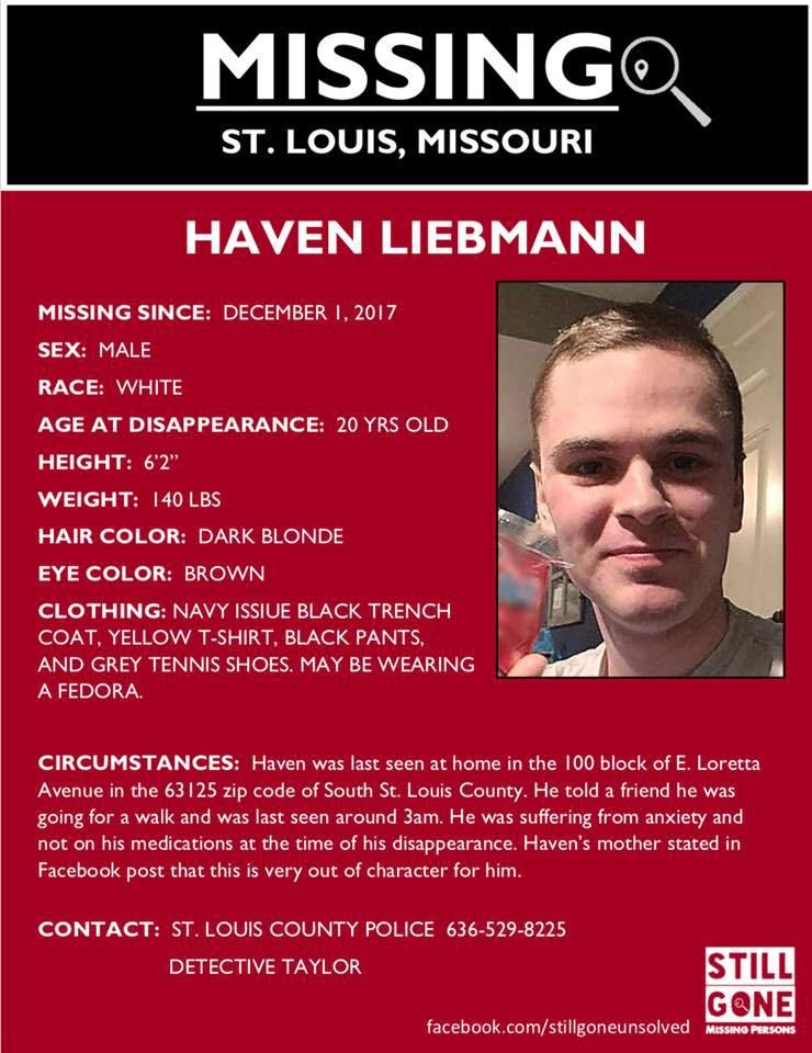 Missing Persons Posters Find Missing Haven Liebmann  Missing Persons  Pinterest  Missing .