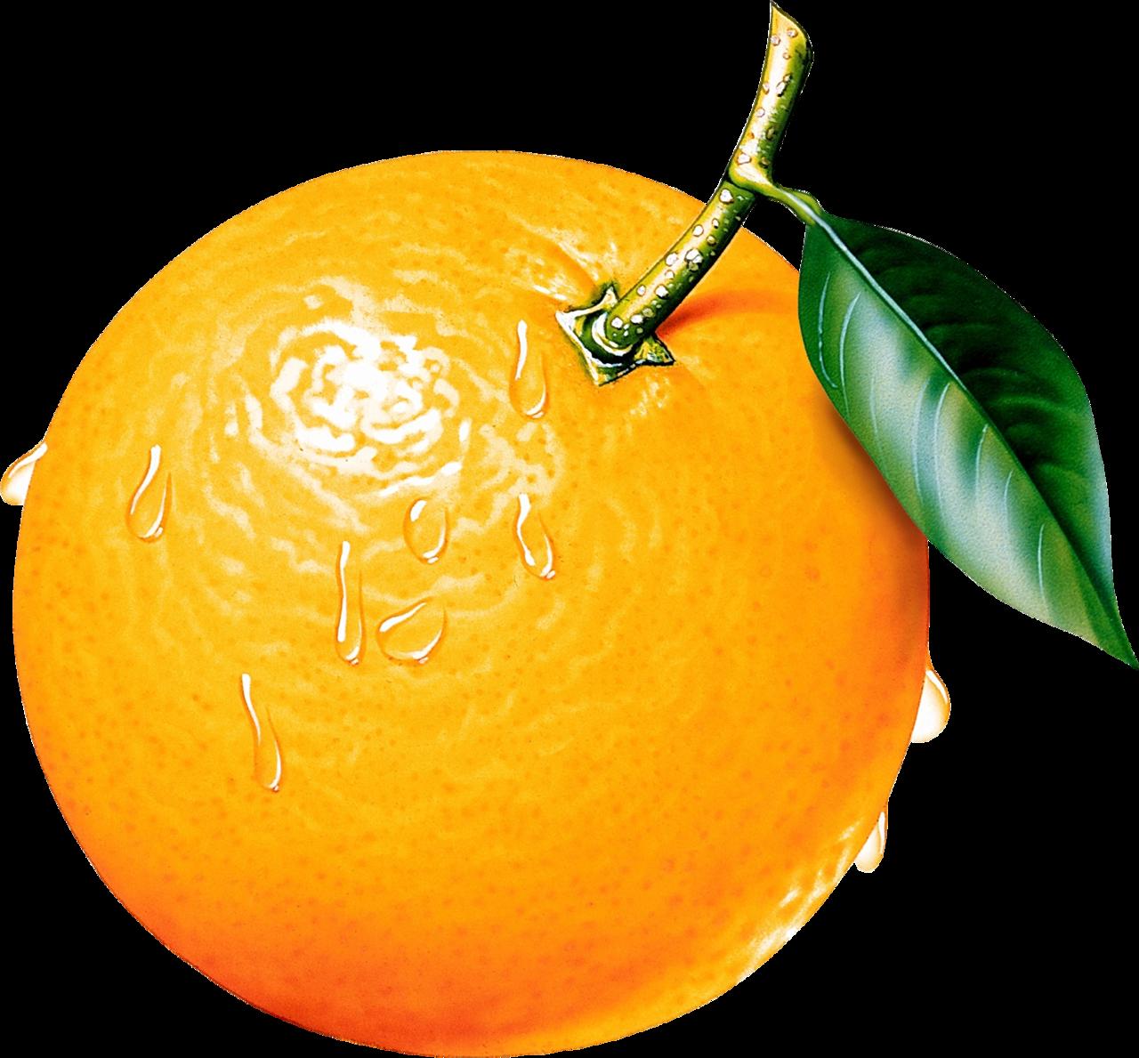 Нарисованная картинка апельсин