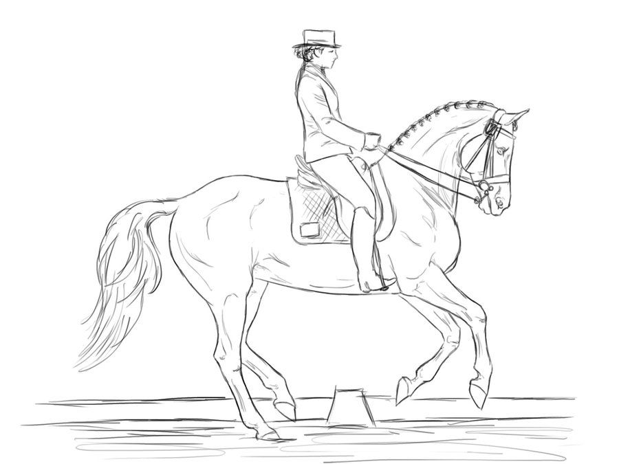 Dressage Horse Coloring Pages | Friesians | Pinterest