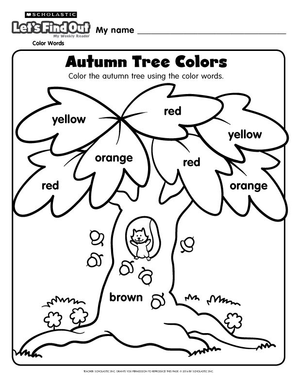 An #autumn tree coloring page from Let's Find Out magazine