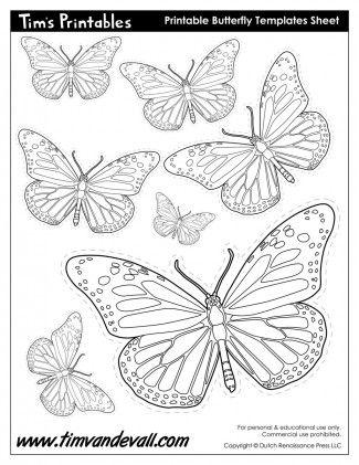 Printable Butterfly Template Sheet  Printable Sticker Sheets In
