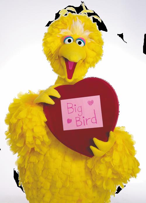 Big Bird Png Png Images Big Bird Free Png