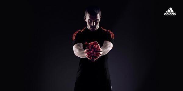 worldcup-hearts-2.jpg (600×300)